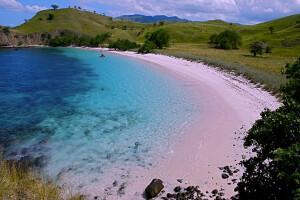 розовый пляж Комодо
